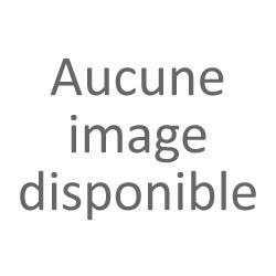 Collecteur inconel pour Ducati Panigale 1299 2015-2016