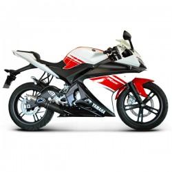 Y088094CR Ligne Termignoni carbone Yamaha YZF-R 125 08-13