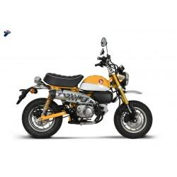 Silencieux Termignoni conique titane carbone pour Honda Monkey 125 tous modèles