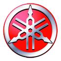 X-Max 250 (07-14)