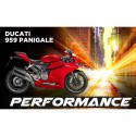 959 Panigale (16-17)